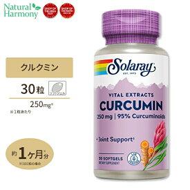 SOLARAY クルクミン(秋ウコンエキス ターメリック) 250mg 30粒