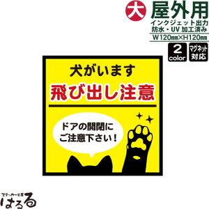 犬の前足/正方形/犬がいます飛び出し注意(大サイズ)