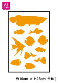 【 メール便 限定 送料無料 】 熱帯魚 セット 防水 可愛い おしゃれ ステッカー スノーボード アクアリウム 車 バイク ペット 傷隠し 楽天 通販