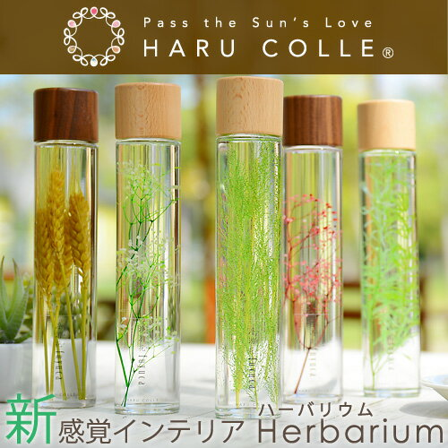 ハーバリウム プレミアムタイプ(木製キャップ) | グリーン 浮游花 ふゆか プリザーブドフラワー ギフト ドライフラワー 観葉植物 インテリア 雑貨 プレゼント