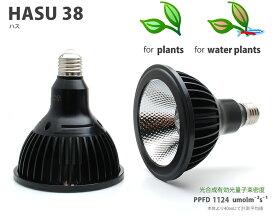 植物育成LEDライト HASU 38(ハス 38)
