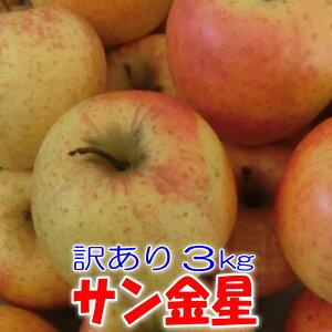 【送料無料】訳ありりんご サン金星3kg【青森県産・岩手県産】【訳あり】【りんご】【家庭用】