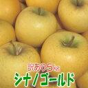 【送料無料】訳ありりんご シナノゴールド5kg【岩手県産】【訳あり】【りんご】【家庭用】
