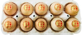 烏骨鶏卵 10個 規格外品【北海道・九州は送料が1296円になります。】 うこっけい ウコッケイ 玉子