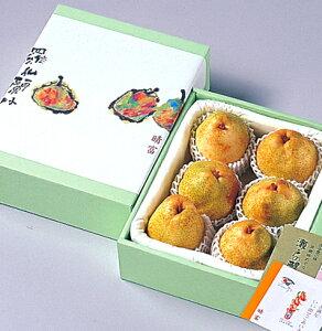 【シルバーベル 6玉】洋梨/高級梨/お歳暮/贈り物/ギフト