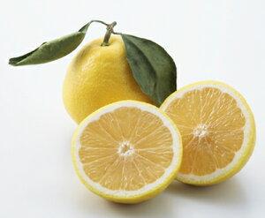 【ニューサマーオレンジ(小夏・日向夏)8玉】柑橘/オレンジ/贈り物/ギフト