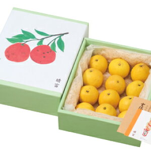 【ニューサマーオレンジ(小夏・日向夏)12玉】柑橘/オレンジ/贈り物/ギフト