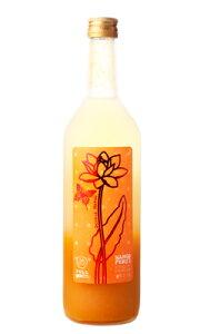 フルフル 完熟マンゴー梅酒 720ml