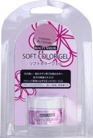 【普通郵便で送料無料】ソフトカラージェル (SCG-6)SOFT COLOR GEL