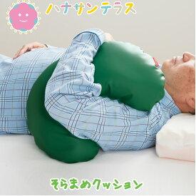 日本製 介護 クッション 防水 そらまめ クッション 1mmビーズ | 床ずれ予防 体位変換パッド かかとの挙上 側臥位の補助 関節などの当たる部分の保護などに便利 高齢者 介護 敬老の日 父の日 母の日 プレゼント【ラッピング可】