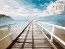 油絵塗り絵 数字油絵 大人気!【数字で塗り絵 インナーフレーム付】大人の塗り絵 油絵 塗り絵セット 風景 海 自然 空 …
