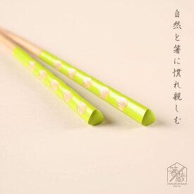 パレット ライトグリーン 18cm お箸の専門店 箸蔵まつかん