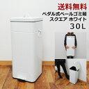 【送料無料】ゴミ箱 30L スクエア ペダル式 ゴミ箱 フタ付きゴミ箱 ふた付きダストボックス ごみ箱 ゴミ箱 キ…