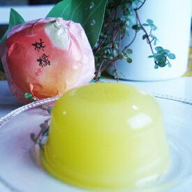 送料無料 すりおろし林檎ゼリー9個入り ご自宅用 フルーツゼリー お試し りんご 手土産 ハロウィン ラッピング不可