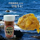 甘塩 うに 津軽海峡 佐井村産 キタムラサキウニ お取り寄せ 秋田 グルメ 塩ウニ 塩うに