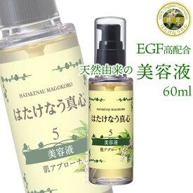 egf 美容液 5番 60ml 化粧品 ニキビ跡 吹き出物 目元 しみ しわ 天然UV対策 紫外線 顔ダニ 敏感肌 美肌 ターンオーバー ニキビ ヒトオリゴペプチド-1 エイジングケア化粧品