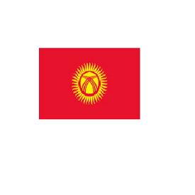 旗 外国旗 オーダー キルギス H120×W180cm テトロンポンジ製 Kyrgyzstan 旗 フラッグ 160か国応