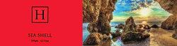 HARRISONSハリソンズSEASHELLシーシェルハンチングマルゼHATBLOCK帽子大きいサイズ日本製メンズサイズ調節春夏ハンチングレディースサックス生成りネイビー【ラッピング送料無料】ギフトプレゼント
