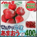 ひんやり!福岡県産冷凍いちご(あまおう)