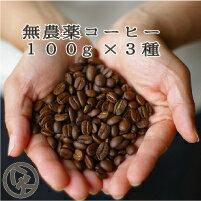 送料無料 八月の犬 お試し無農薬 100gx3種 セット コーヒー豆 お試し コーヒー ゆうパケット発送 【RCP】