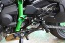 バイク用品 ステップ ステップ&ステップボード&タンデムキットウッドストック WOODSTOCK バックステップキット 4POS…