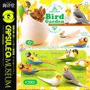 Capq birdgarden