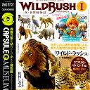 Capq wildrush