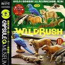 Capq wildrush2