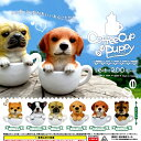 Cofee dog