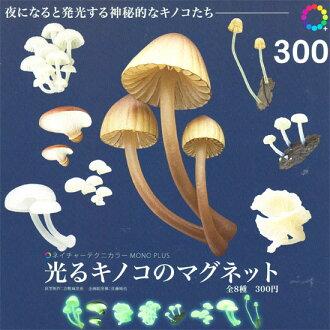 突然,我开始燃烧鲜明的色彩自然单加蘑菇磁铁 ☆ 8 种集的 ★