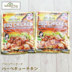 バーベキューミックス シーズニングミックス バーベキューチキン 2セット BBQ ハワイアンフード 送料無料