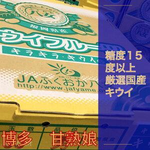 国産 キウイフルーツ 甘うぃ 甘熟娘 甘香 約3.6kg 約27〜30個 産地箱にて発送