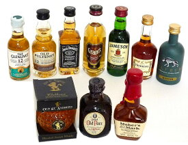 輸入ウイスキー・ブランデー ミニチュアボトル 50ml 10本セット vol1