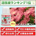 【送料無料】【メーカー直販店】野菜作りや園芸に。プロご用達「HB-101」【35cc】HB101