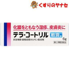 【ネコポス対応】テラ・コートリル軟膏a 6g/【指定第2類医薬品】
