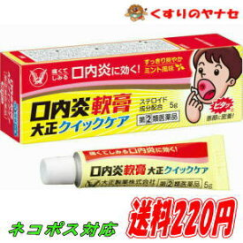 【ネコポス対応】口内炎軟膏大正クイックケア 5g /【指定第2類医薬品】