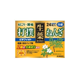 【第3類医薬品】ピタフィット 【24枚】(テイコクファルマケア)【肩こり・腰痛・筋肉痛】