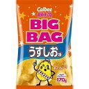 ポテトチップス ビッグバッグ うすしお味 【170g×12個】(カルビー)【お菓子】