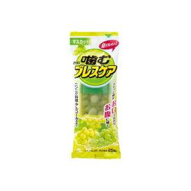 噛むブレスケア マスカット味【25粒】(小林製薬)【口臭ケア/口中清涼剤】