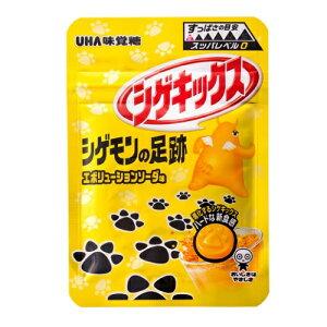 シゲキックス シゲモンの足跡 エボリューションソーダ 【20g×10個セット】(UHA味覚糖)