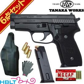 タナカワークス SIG P229 Evolution 2 Frame HW 発火式 モデルガン 本体 フルセット + /シグ ザウエル SAUER ハンドガン ピストル 拳銃 エボリューション2