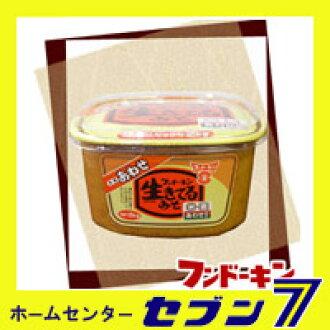 味噌 Fundokin 活着泡杯和 2 公斤 «味噌味噌味噌味噌 nikomi 乌冬面九州味噌味噌开国调味国内»