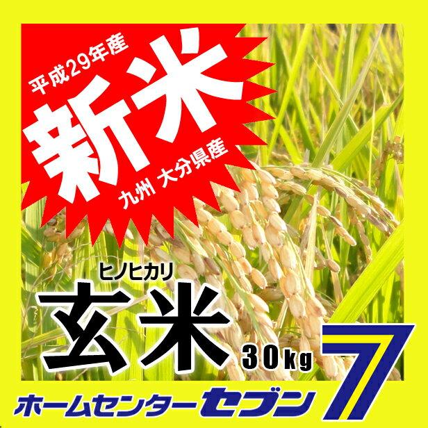 ひのひかり 玄米 30kg 送料無料 29年産 [九州 大分県産 ヒノヒカリ 30kg 米 お米 うるち米]