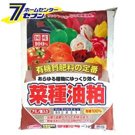 菜種油粕 2kg サンアンドホープ [油かす 肥料 油粕 園芸 園芸用品]
