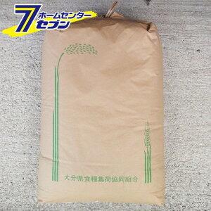 新米 ヒノヒカリ 玄米 30kg 令和2年産 新米 [九州 大分県産 ひのひかり 30kg 米 お米 うるち米]