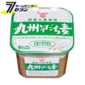 九州育ち麦味噌 750g フンドーキン醤油 [味噌 ミソ みそ 甘口 こうじ そだち麦味噌 調味料 ]