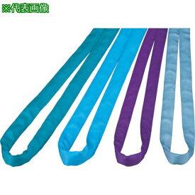 ■田村 ラウンドスリング SSタイプ HN-W010×1.0M 紫色 〔品番:HNW0100100〕【3902951:0】