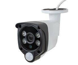 HDC-EGR13 イーグル WTW-EGSL162WP 増設カメラ単体 防犯カメラ 監視カメラ 塚本無線 ワイヤレスカメラ ホワイト 白