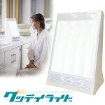 「グッデイライト」太陽光を再現したライトセラピー専用照明