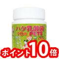 ハタ乳酸菌FORPET(60g入り約2ヶ月分計量スプーン付)